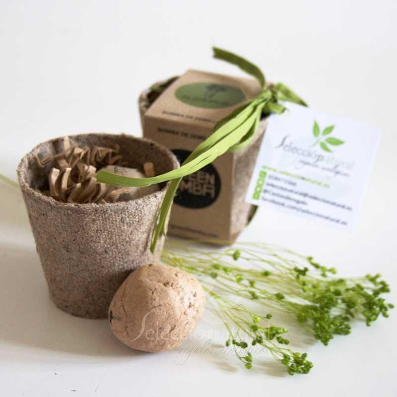 Detalle de boda regalo original para una boda semillas arom ticas - Plantas pequenas para regalar boda ...
